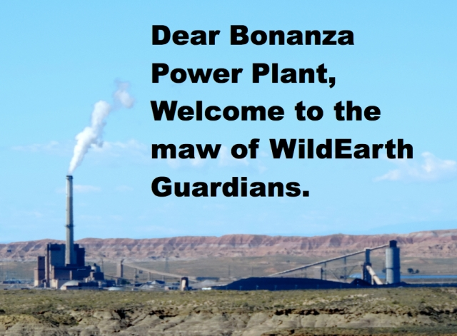 Bonanza Power Plant