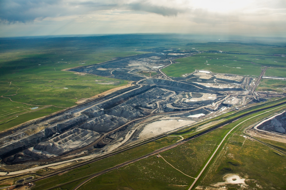 Biting Back on Illegal Coal Sales