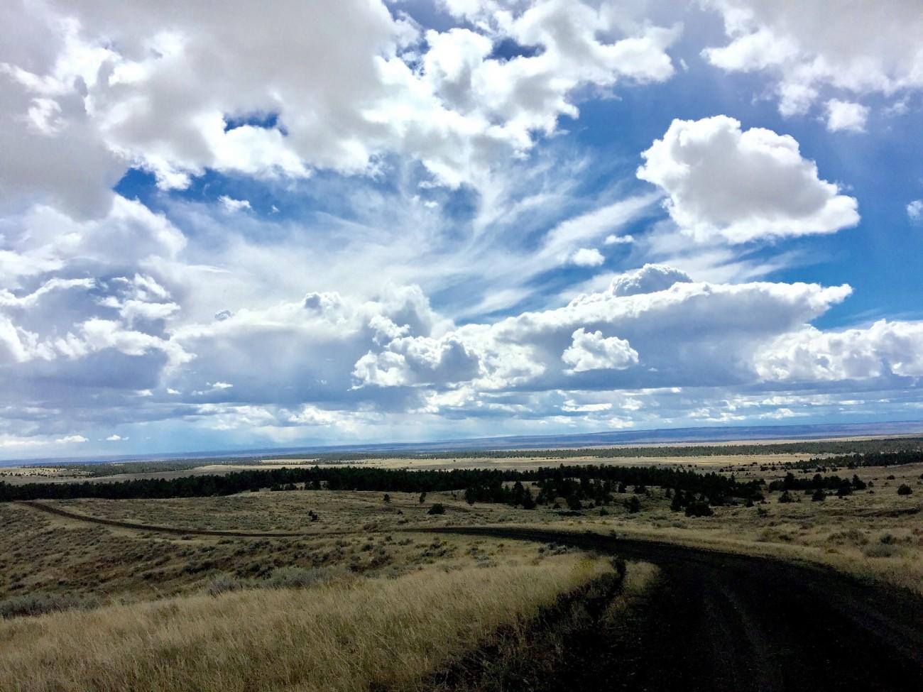 Thunder Basin Natl Grasslands Vladeb