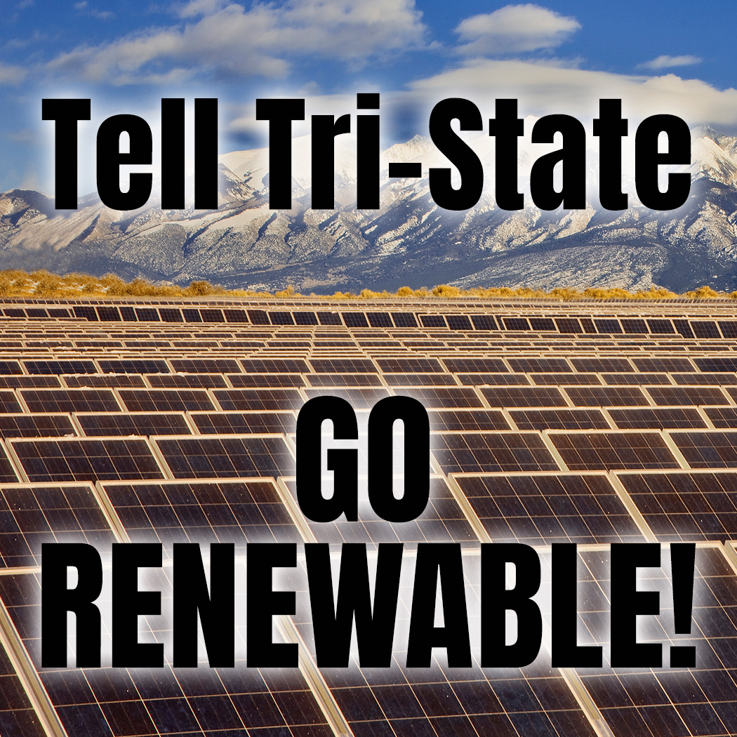 tri-state renewable